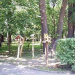 У центральному парку міста Вінниця нічого не відбулось