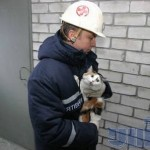 """Для допомоги у ліквідації наслідків урагану """"Сенді"""" Україна готова виділити Нестора Шуфрича"""
