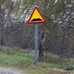 """Укравтодор та ДАІ замовлять знаків """"Нерівна дорога"""" на 9,3 млн. грн."""