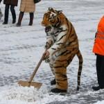 В Україну йдуть люті морози