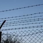 Російські прикордонники демонтують з колоній і тюрем колючий дріт щоб відгородитися від України