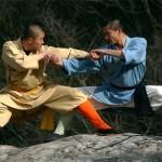 Під час візиту до Китаю Янукович домовився про співпрацю силовиків в області бойових мистецтв