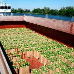 Втрачена українська баржа з кавунами допливла до Швеції