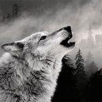 Під час безжалісного граду і блискавиці молода вовчиця зігріла вовчат